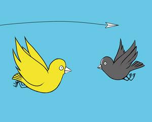 Bird's-meet
