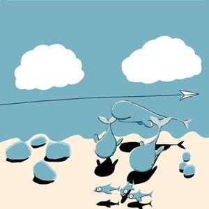 Two-whales-deciding-where-to-go_3